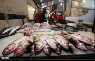 بازار ماهی فروشان آبادان