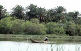 جزیره شادمانی نقش مهمی در صنعت گردشگری آبادان دارد.